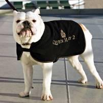 Dog QM2