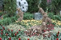 Bilde 12 Flower Dome5
