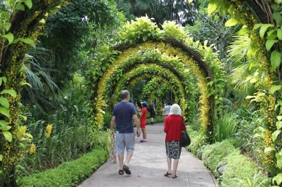 Bilde 18 Botanic Garden