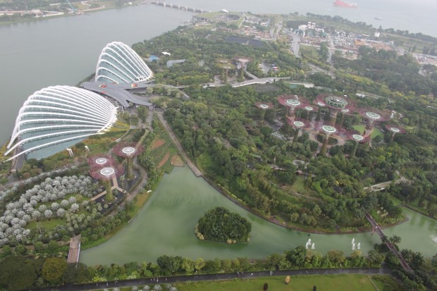 Bilde 5 Gardens by the Bay